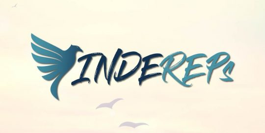 IndeReps-Largest-Independent-Rep-Network----Logo-Design-Website-Design-Social-Media-and-Marketing-strategy-compressor